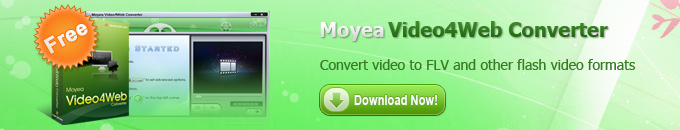 Convert video to FLV