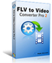 FLV to Video Converter